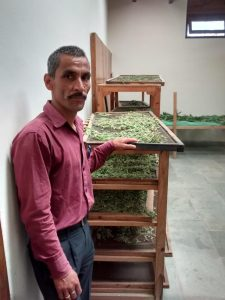 Apricot products processing, packing and selling at Arohi Bal Sansar Satoli